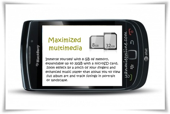 maximized multimedia