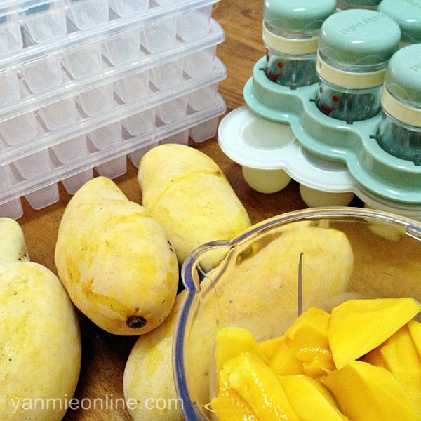 puri buah mangga
