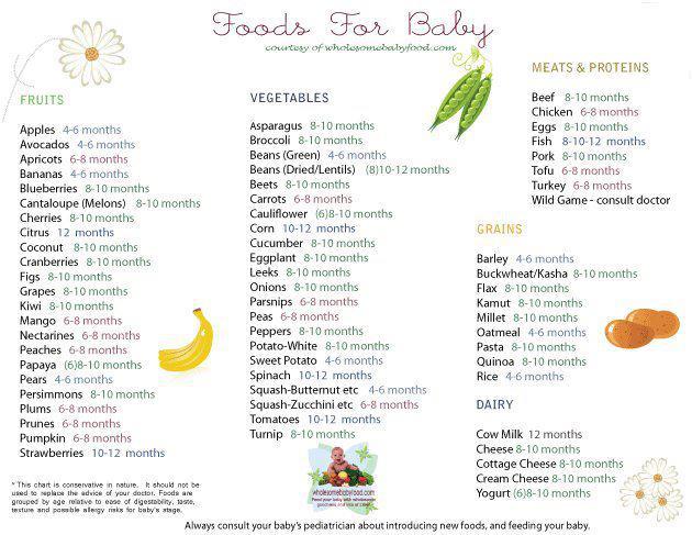 solid food untuk bayi