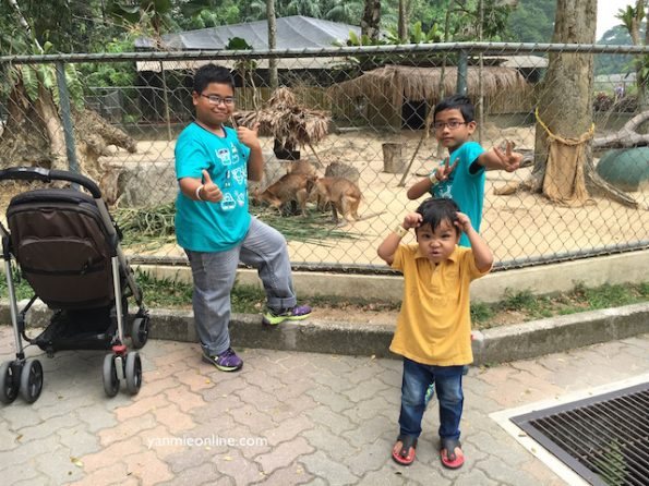 zoo-negara